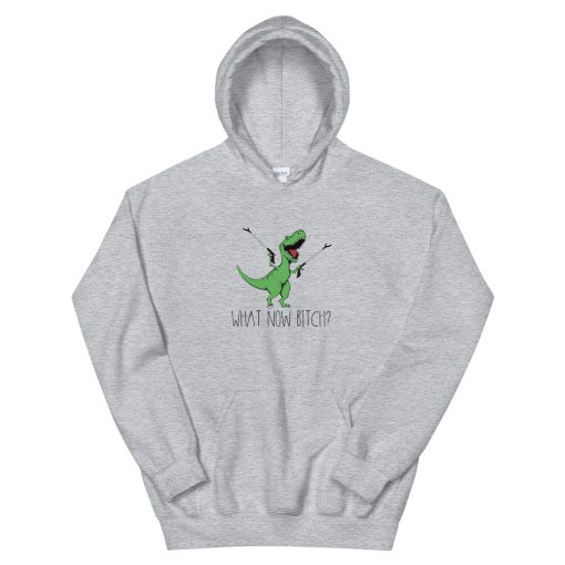 Dinosaurs T Rex What now bitch Hooded Sweatshirt